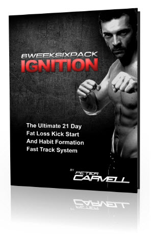 ignitioncover
